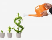 Money-Growth-Photo
