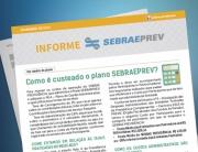 InformeSEBRAEPREV